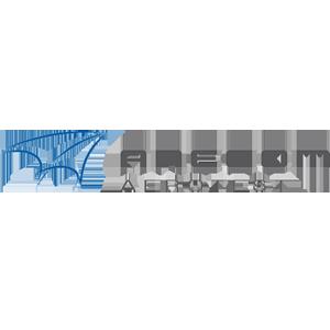 Anecom_300px